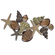 Natural Sea Shells Metal Plaque, 56x31 in. ($104) ❤ liked on Polyvore featuring home, home decor, metal home decor, seashell home decor and metal plaque