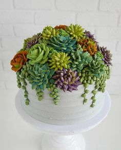 The frosting on this succulent cake : succulents Pretty Cakes, Cute Cakes, Beautiful Cakes, Amazing Cakes, Bolo Floral, Floral Cake, Cupcakes Succulents, Edible Succulents, Succulent Plants