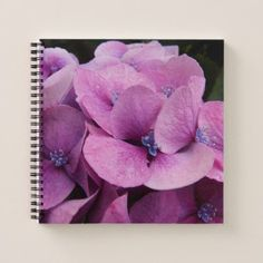 Pink Hydrangea Flowers Notebook - photography gifts diy custom unique special
