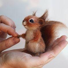 """Gefällt 768 Mal, 46 Kommentare - сувениры из шерсти. Хабаровск. (@derevschikova) auf Instagram: """"Белочка чудесно помещается в ладошке. Взяв ее в руки, очень не хочется выпускать. #белочка #белка…"""" Squirrel."""