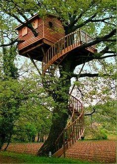 Case sull'albero - Casa sull'albero con scala particolare