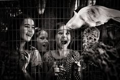 Photograph I am a cage by Tatiana Avdjiev on Bird In A Cage, Lewis Hine, Creative Portfolio, Kids Education, Beautiful Images, Fine Art, Black And White, Children, Photography