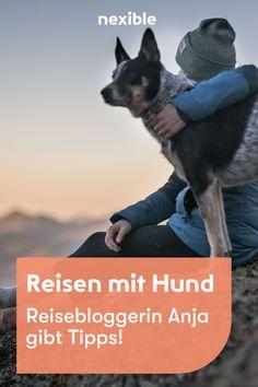 Reisebloggerin Anja gibt Tipps. Von der Reiseplanung, Packliste, bis zum richtigen Reiseziel und der Unterkunft. Vizsla, Am Meer, Movies, Movie Posters, Beautiful Dogs, Vacation Places, North Sea, Tourism, Films