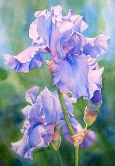 Magnificent iris #painting!