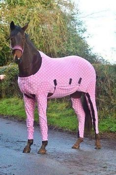 Yes, there is such a thing as onesies for horses! Too, funny! I want one made out of fly sheet material!