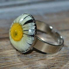 Real Pressed Daisy Flower Resin Ring in black resin and set on an 18mm silver crown setting
