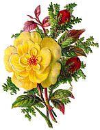 Victorian Flower Clip Art