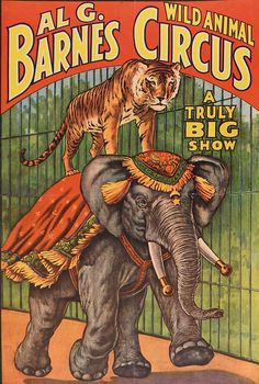 """Al G. Barnes Wild Animal Circus poster with tiger and elephant, dated 1960. Unframed. Age toning, corner loss, adhesive residue on edges, fold along center, 13.5"""" L x 19"""" H. Circus Circus, Dark Circus, Elephant Poster, Tiger Poster, Carnivals, Vintage Circus Posters, Carnival Posters, Vintage Circus Performers, Cirque Vintage"""