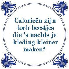 Kilocalorieën, je hoort die term zo vaak, maar wat ís het eigenlijk?! Het zijn in ieder geval niet die beestjes 's nachts je kleren kleiner zitten te maken
