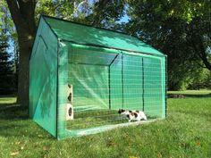 Picture of Large Outdoor Cat Run, catio Outdoor Cat Kennel, Outdoor Cat Run, Outdoor Play, Diy Cat Enclosure, Outdoor Cat Enclosure, Cat Cages, Cat Playground, Cat Condo, Cat Room