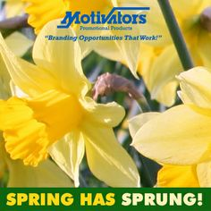 #Spring has sprung! Happy #firstdayofspring.