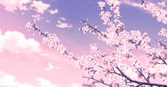anime backgrounds Cherry tree aesthetic anime New ideas Anime Scenery Wallpaper, Anime Backgrounds Wallpapers, Episode Backgrounds, Cute Backgrounds, Aesthetic Backgrounds, Aesthetic Wallpapers, Meme Background, Animation Background, Anime Sakura