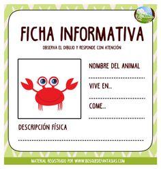 fact sheets sheet 14 – Best Art images in 2019 Spanish Activities, Brain Activities, Educational Activities, Abc Preschool, Bilingual Education, Teacher Hacks, Curriculum, Have Fun, Classroom