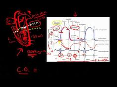 Andrew Wolf, NP, Cardiac #4: Cardiac Cycle - YouTube