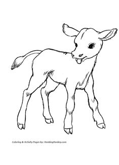free printable cow coloring pages for kids nativity animals