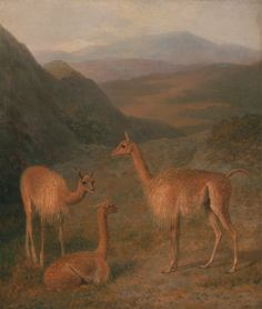 Vicunas. Jacques-Laurent Agasse. 1831.