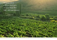 Friday, 19th June - A Night of Chardonnay & French Mussels - Chiang Mai Travel Guide and Hotels Booking