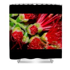 Bursting Out by Kaye Menner Shower Curtain by Kaye Menner
