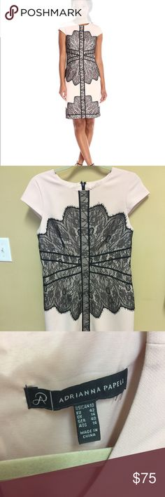 Adrianna Papell Dress Blush with lace overlay. Fits true to size, zippered back. Worn once. Adrianna Papell Dresses