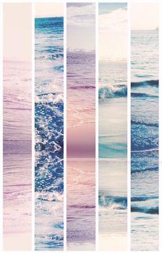 ocean beauty