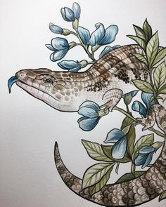 Huge shout out to who does an amazing job turning my paintings into fantastic quality stickers! Skink Tattoo, Animal Drawings, Art Drawings, Lizard Tattoo, Forest Drawing, Les Reptiles, Dragons, Tattoo Project, Love Illustration