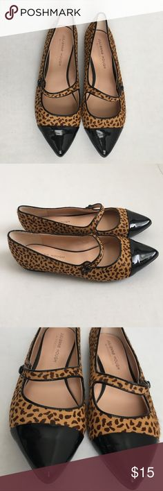 Pointed toe leopard flats New leopard flats with button detail Julianne Hough for Sole Society Sole Society Shoes Flats & Loafers