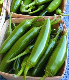 Serrano Peppers, absolutely can't live without! I love everything SPICY! Planting Vegetables, Vegetable Garden, Garden Plants, Types Of Peppers, Serrano Pepper, Stuffed Hot Peppers, Spice Things Up, Gardening Tips, Green Beans