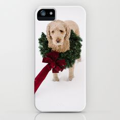 labradoodle in the snow wears a wreath for Christmas iPhone & iPod Case by Tara Romasanta - $35.00