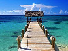 もちろん、見所は美しい海。驚くほど透き通った青に、見惚れてしまいます。サシャはこの海で日々を生き、撮影を行っています。