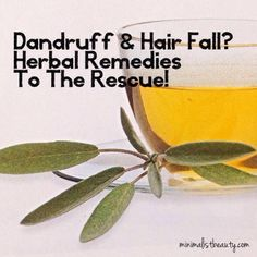 Dandruff & Hair Fall? Herbal Remedies To The Rescue!