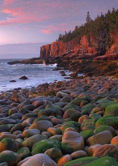 ✮ The rocky coblestone coastline near Otter Cliffs at dawn - Acadia National Park, Maine