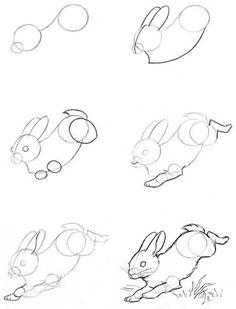 Manera de dibujar un conejo.