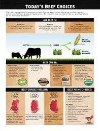 Resultado de imagen para grass fed beef