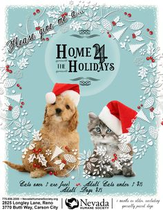 Home 4 the Holidays, an annual pet adoption drive. Our goal is to adopt out 1,000 pets!