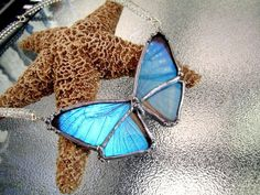 Real Butterfly Jewelry Bridal Blue Morpho by DebrasDivineDesigns