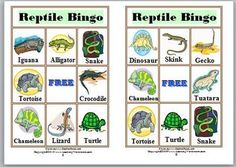 This Bingo Game, for 2-6 players, includes 6 Bingo Cards, 12 Animal Cards, A Certificate of Achievement, and Smiley Face Markers.The 12 reptile...