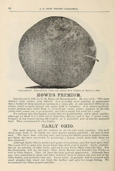 1894 - Catalogue of seed potatoes / - Biodiversity Heritage Library