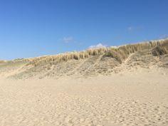 Hotels, Beach, Water, Outdoor, Event Calendar, Campsite, Netherlands, Cottage House, Gripe Water