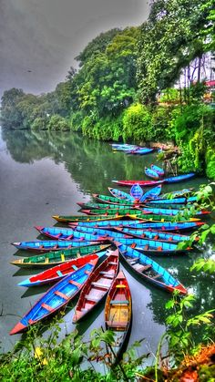 Colorful Canoes near the shore