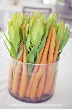 Carrot & Leucadendron Arrangement    ha! love this.   mimosaflowers.com