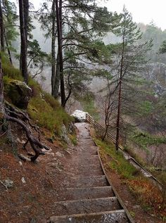 Steps and view on the way to the Falls of Foyer, Scotland