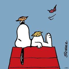 FALL SNOOPY https://www.facebook.com/Snoopy/photos/a.600527606664666.1073741825.161564697227628/1063300703720685/?type=3