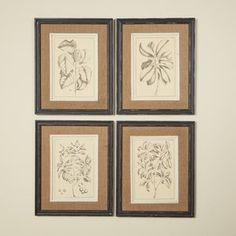 Botanica Framed Prints (Set of 4) (Set of 4)