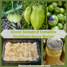 Make your own green enchilada sauce with this easy recipe! This delicious enchilada sauce is made with green tomatoes & tomatillos. Yum! |  Montana Homesteader.com