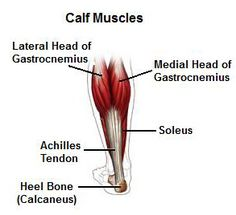 Calf Stretches: Improve Flexibility  Great website with info about foot pain, the causes and things to help relieve it.