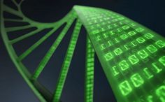 We Could Back Up The Entire Internet On A Gram Of DNA   The Future of Data Storage, Futuristic Technology, Genetics, The Future of Computers