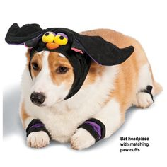 Bat Headpieces with Matching Paw Cuffs (Dog Halloween Costume - Discontinued 2012)