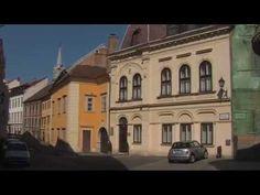 Sopron'da Yatırım Fırsatları: SOPRON & MACARISTAN Tarihi şehir olan Sopron'un bir diğer ilgi çekici yanı, bölgenin mükemmel şarapları olması, bu nedenle şehrin asil şarapları ile susuzluklarını gidermek isteyenler arasında gittikçe daha popüler hale geliyor.  Sopron Macaristan'ın en güzel şehirlerinden biri olması ile birlikte ayrı bir tarihi değer taşır. Avusturya sınırında bulunması itibariyle ülkenin iç kısımlarından daha farklı bir karakteri ve havası var.