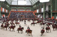 The Hermés Le Saut riding competition brings the world's best jumpers to Paris and for three days transforms the City of Light into horse country.