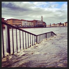 Pisa Fiume Arno in piena